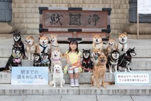 フォトセッション_柴犬応援団と